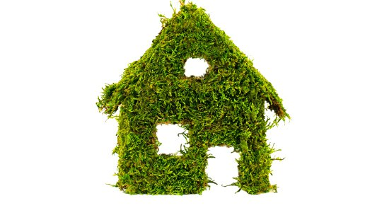 Why-Choose-a-green-energy-supplier-green-house-550x364.jpg